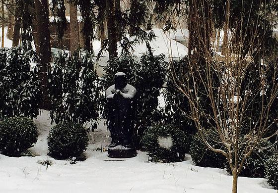 Zen Winter