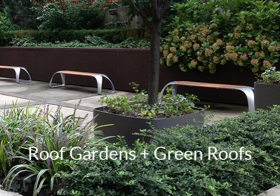Roof Gardens landscape architecture